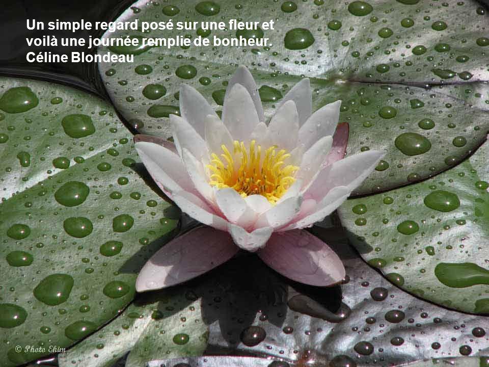 La voix du Grand Esprit s'entend dans le gazouillement des oiseaux, le clapotis de l'eau, et la douce respiration des fleurs. Gertrude Simmons Bonin