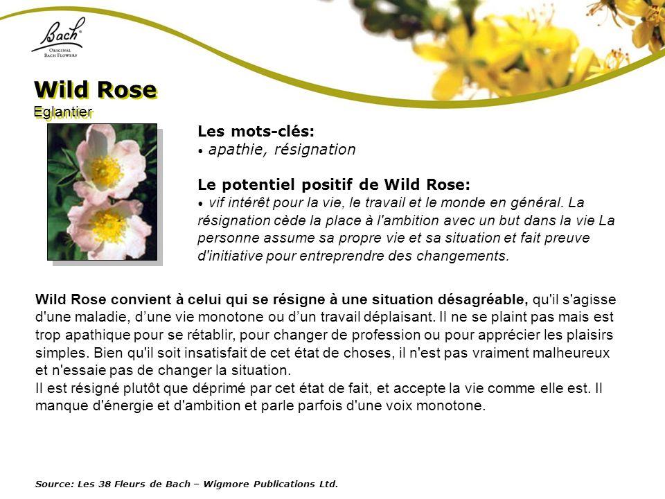 Les mots-clés: apathie, résignation Le potentiel positif de Wild Rose: vif intérêt pour la vie, le travail et le monde en général. La résignation cède
