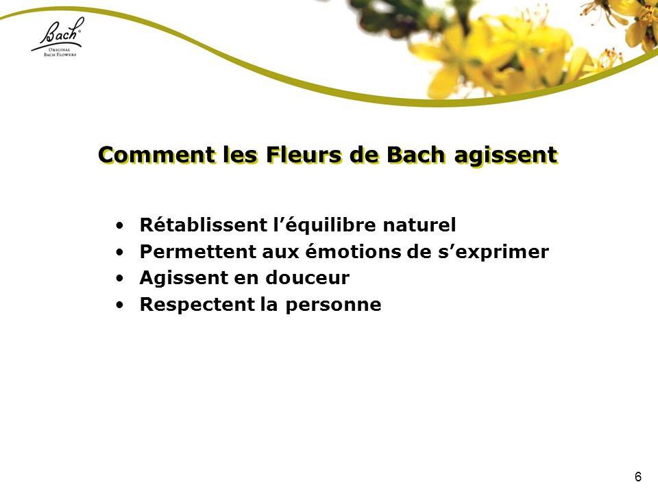 6 Rétablissent léquilibre naturel Permettent aux émotions de sexprimer Agissent en douceur Respectent la personne Comment les Fleurs de Bach agissent