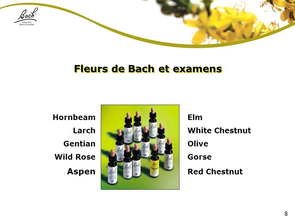 8 Fleurs de Bach et examens Hornbeam Larch Gentian Wild Rose Aspen Elm White Chestnut Olive Gorse Red Chestnut