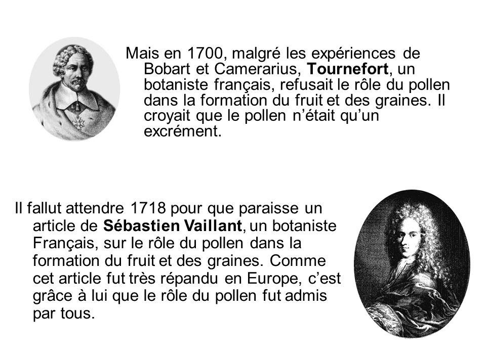 Mais en 1700, malgré les expériences de Bobart et Camerarius, Tournefort, un botaniste français, refusait le rôle du pollen dans la formation du fruit