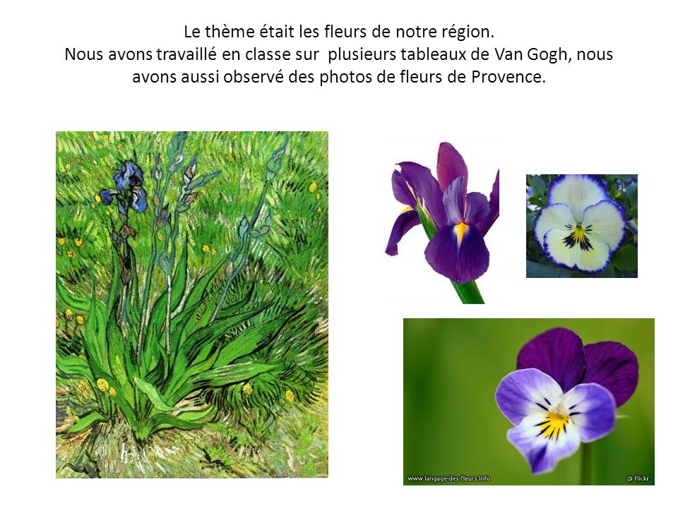 Le thème était les fleurs de notre région. Nous avons travaillé en classe sur plusieurs tableaux de Van Gogh, nous avons aussi observé des photos de f