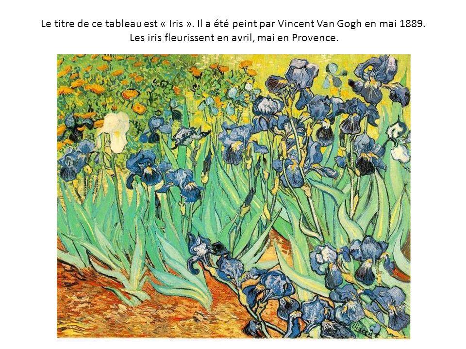 Le titre de ce tableau est « Iris ». Il a été peint par Vincent Van Gogh en mai 1889. Les iris fleurissent en avril, mai en Provence.