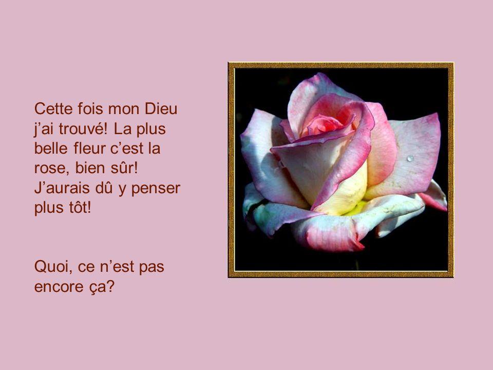 Cette fois mon Dieu jai trouvé! La plus belle fleur cest la rose, bien sûr! Jaurais dû y penser plus tôt! Quoi, ce nest pas encore ça?