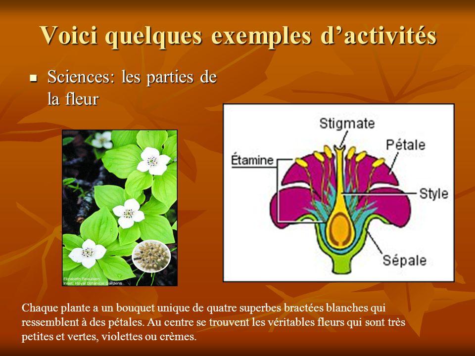 Voici quelques exemples dactivités Sciences: les parties de la fleur Sciences: les parties de la fleur Chaque plante a un bouquet unique de quatre superbes bractées blanches qui ressemblent à des pétales.