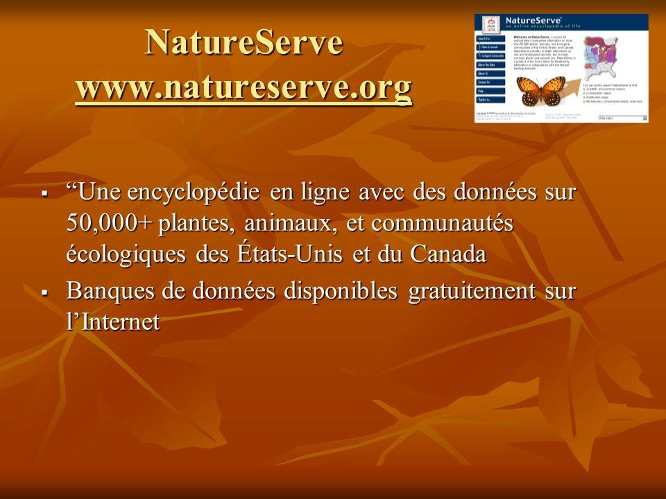 NatureServe www.natureserve.org Une encyclopédie en ligne avec des données sur 50,000+ plantes, animaux, et communautés écologiques des États-Unis et du Canada Une encyclopédie en ligne avec des données sur 50,000+ plantes, animaux, et communautés écologiques des États-Unis et du Canada Banques de données disponibles gratuitement sur lInternet Banques de données disponibles gratuitement sur lInternet
