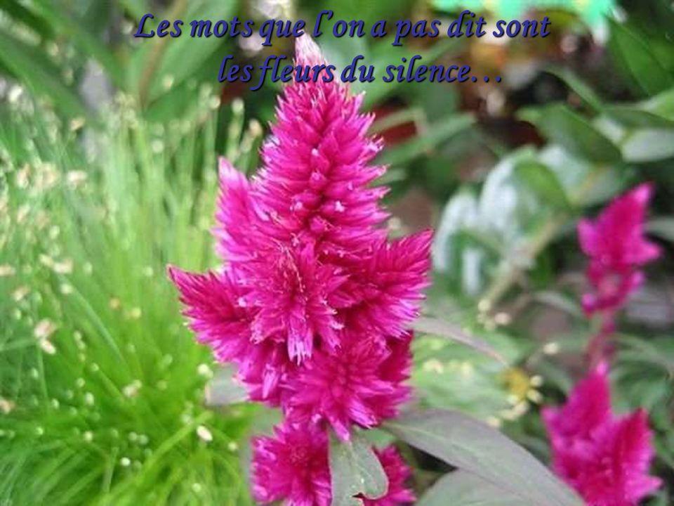 La plus belle de toutes les fleurs Est la fleur de la liberté…
