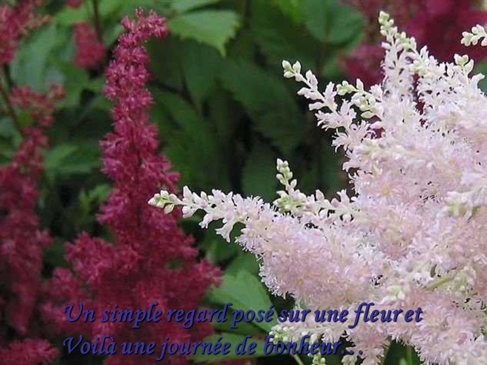 Les mots que lon a pas dit sont les fleurs du silence…