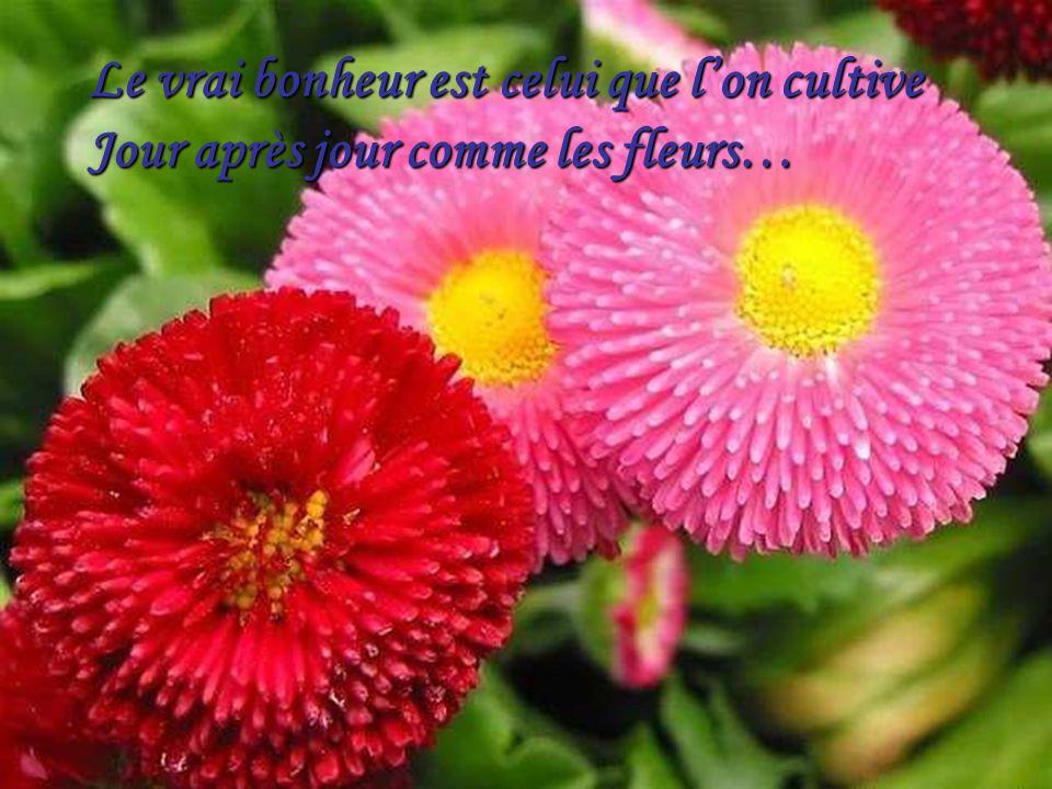 Le vrai bonheur est celui que lon cultive Jour après jour comme les fleurs…