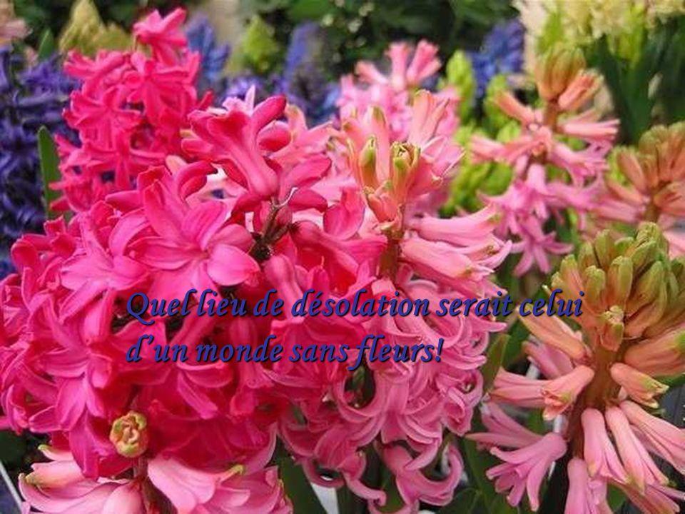 La vie cest comme une fleur,elle a besoin De soleil et de pluie pour sépanouir…