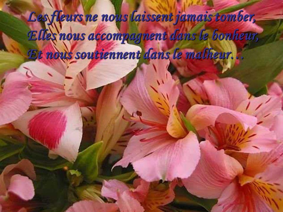 Les fleurs ne nous laissent jamais tomber, Elles nous accompagnent dans le bonheur, Et nous soutiennent dans le malheur…