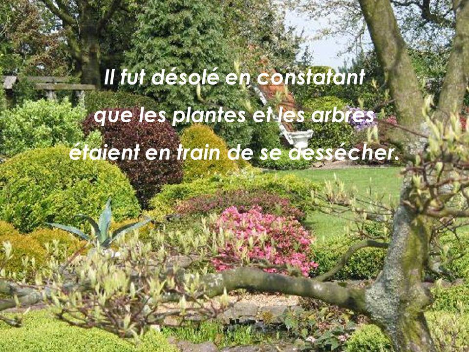 CRÉATION LE BER Yvette juillet 2009 rene202@sympatico.ca Texte : Auteur inconnu Musique : The silver swans Paul McCandless