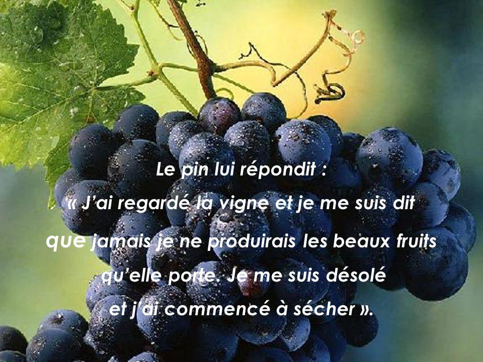 Le pin lui répondit : « Jai regardé la vigne et je me suis dit que jamais je ne produirais les beaux fruits quelle porte.