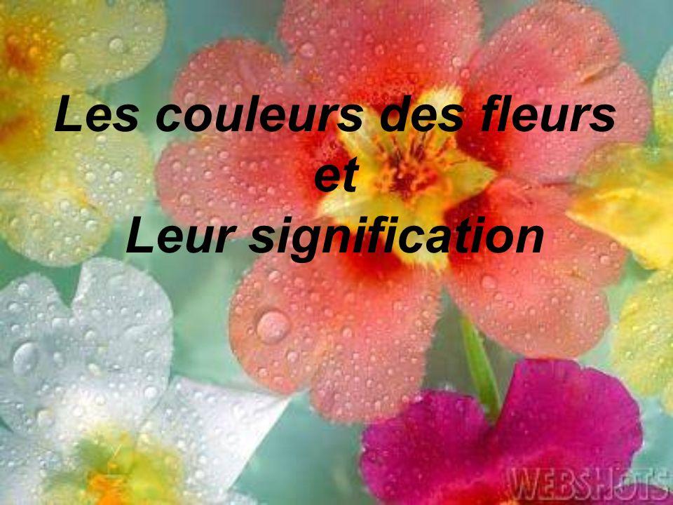 Les couleurs des fleurs et Leur signification