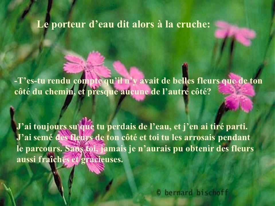 Le porteur deau, touché de cette confession, lui répondit: -Ne songe plus à ça et pendant que nous retournerons à la maison, regarde les fleurs magnifiques au bord du chemin.