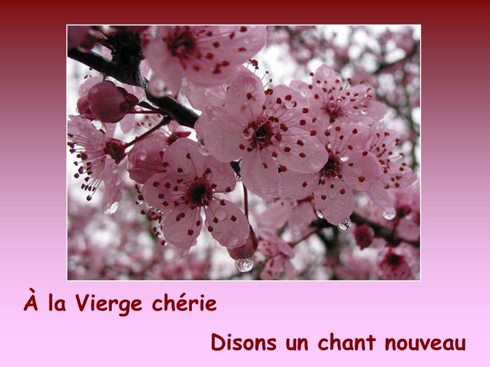Cantique : Cest le mois de Marie – interprété par : JOSÉE VACHON Montage : Date : le 1er mai, 2009