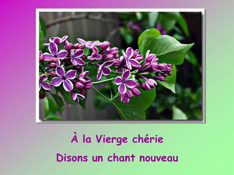 Les vertus dont lemblème Se découvre en ces fleurs.