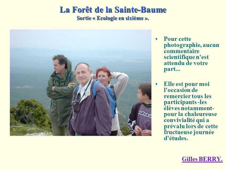 Le Chemin des Roys... Le massif de la Sainte- Baume doit son nom à la grotte, ou