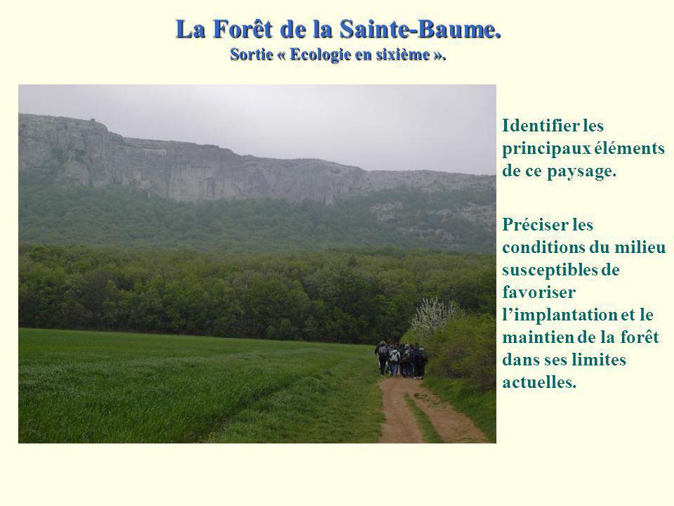 Décrire les trois éléments principaux du paysage observé. La paroi rocheuse est orientée face au nord. Rappeler les différents intérêts agricoles de l
