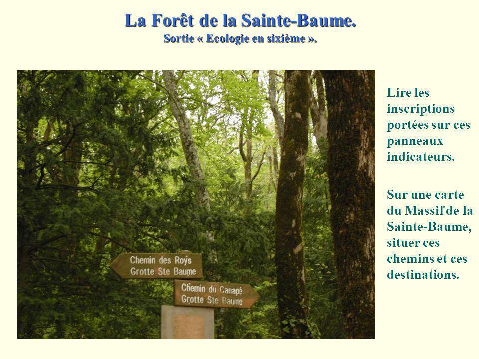 Faire part, d'après les informations inscrites sur le panneau, du propriétaire de la forêt. Par ailleurs, proposer des justifications aux consignes fo