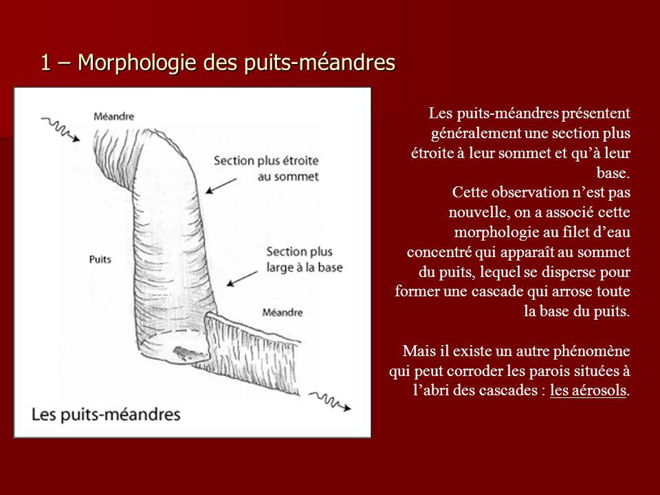 1 – Morphologie des puits-méandres Les puits-méandres présentent généralement une section plus étroite à leur sommet et quà leur base. Cette observati