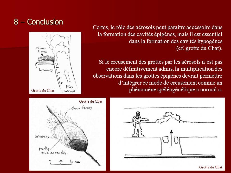 8 – Conclusion Certes, le rôle des aérosols peut paraître accessoire dans la formation des cavités épigènes, mais il est essentiel dans la formation d