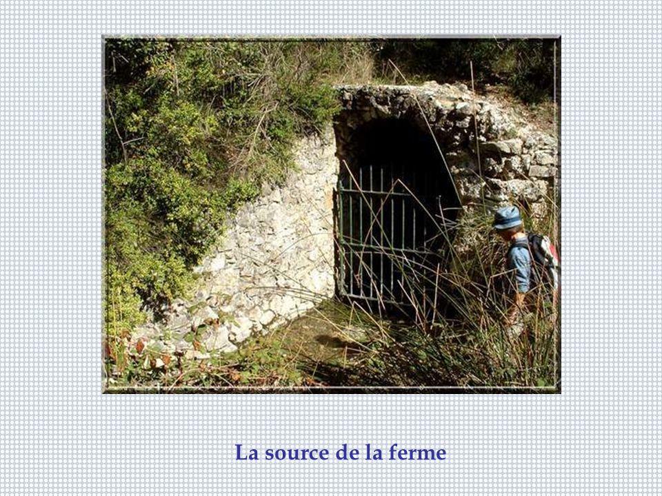 La source de la ferme