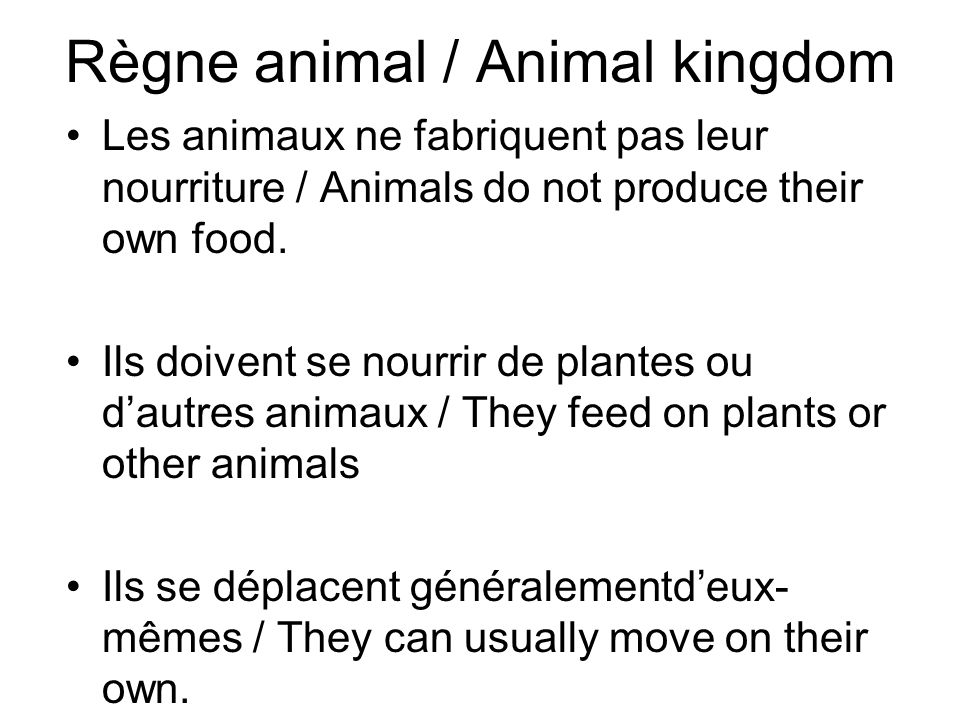 Règne animal / Animal kingdom Les animaux ne fabriquent pas leur nourriture / Animals do not produce their own food. Ils doivent se nourrir de plantes