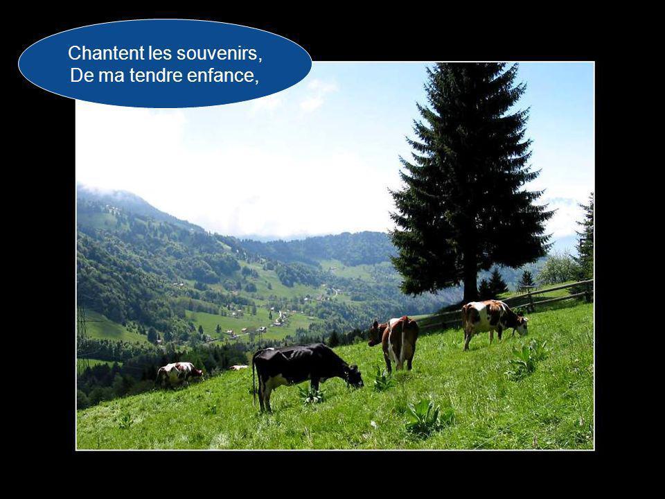 Et les Pyrénées Chantent au vent d'Espagne, Chantent la mélodie Qui berça mon coeur,