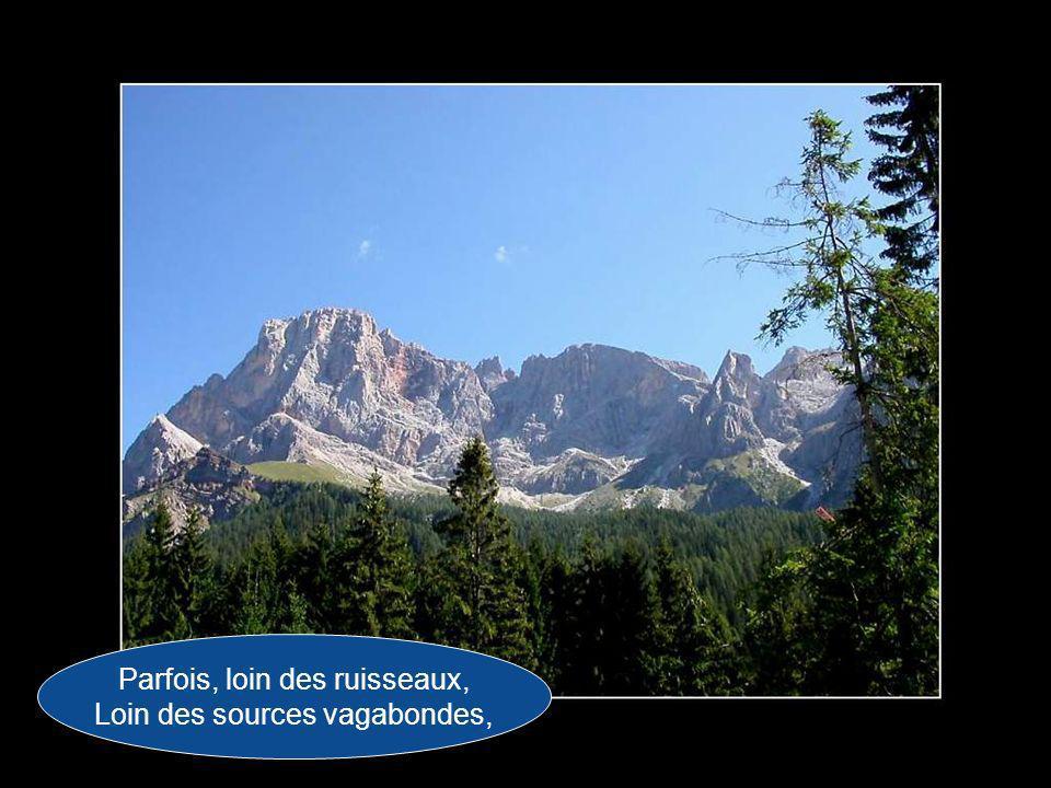 Et, comme les bergers Des montagnes de France, Chantent la nostalgie De mon beau pays