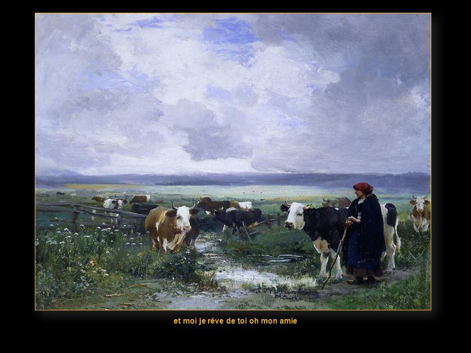 deux bras menlacent parmi les champs de blé