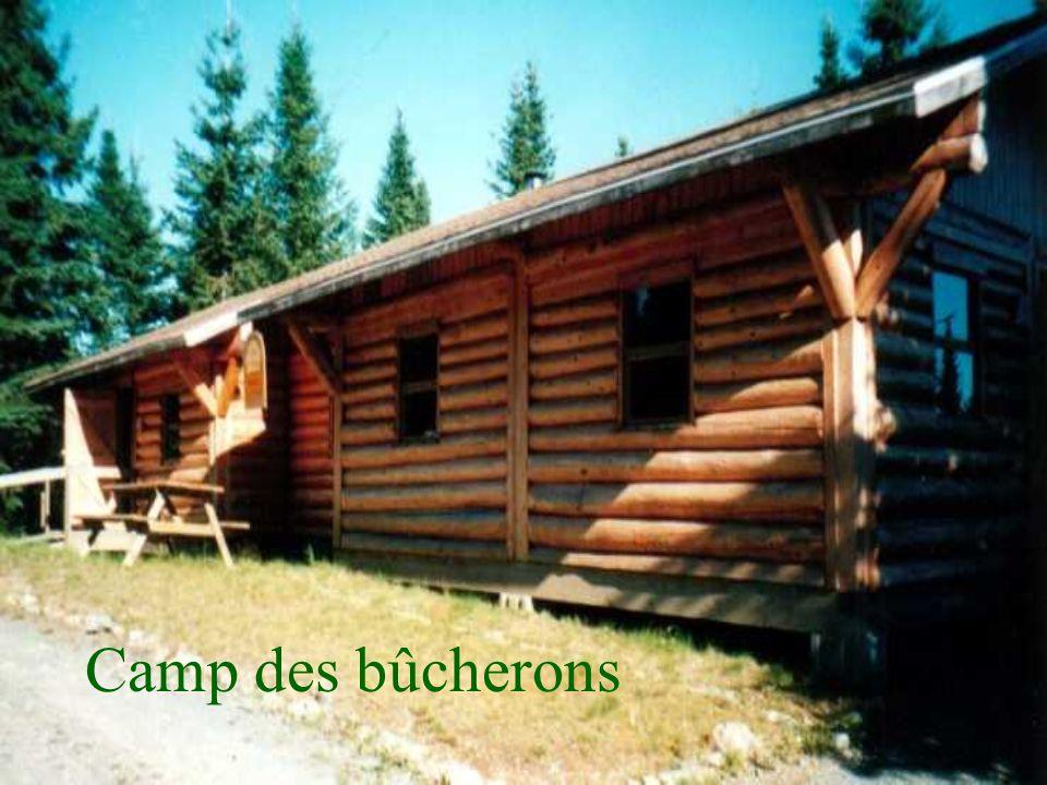 Camp des bûcherons