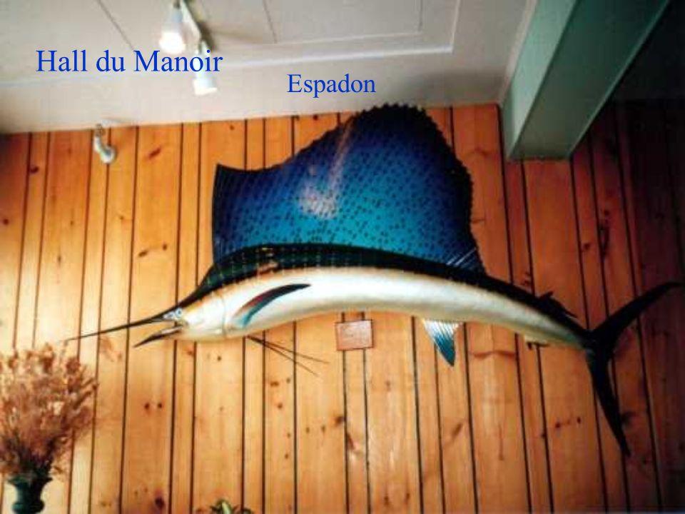 Espadon Hall du Manoir