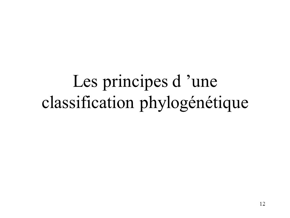 12 Les principes d une classification phylogénétique