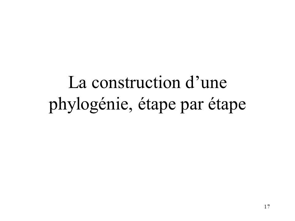 17 La construction dune phylogénie, étape par étape