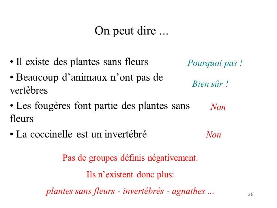 26 On peut dire... Il existe des plantes sans fleurs Beaucoup danimaux nont pas de vertèbres Les fougères font partie des plantes sans fleurs La cocci