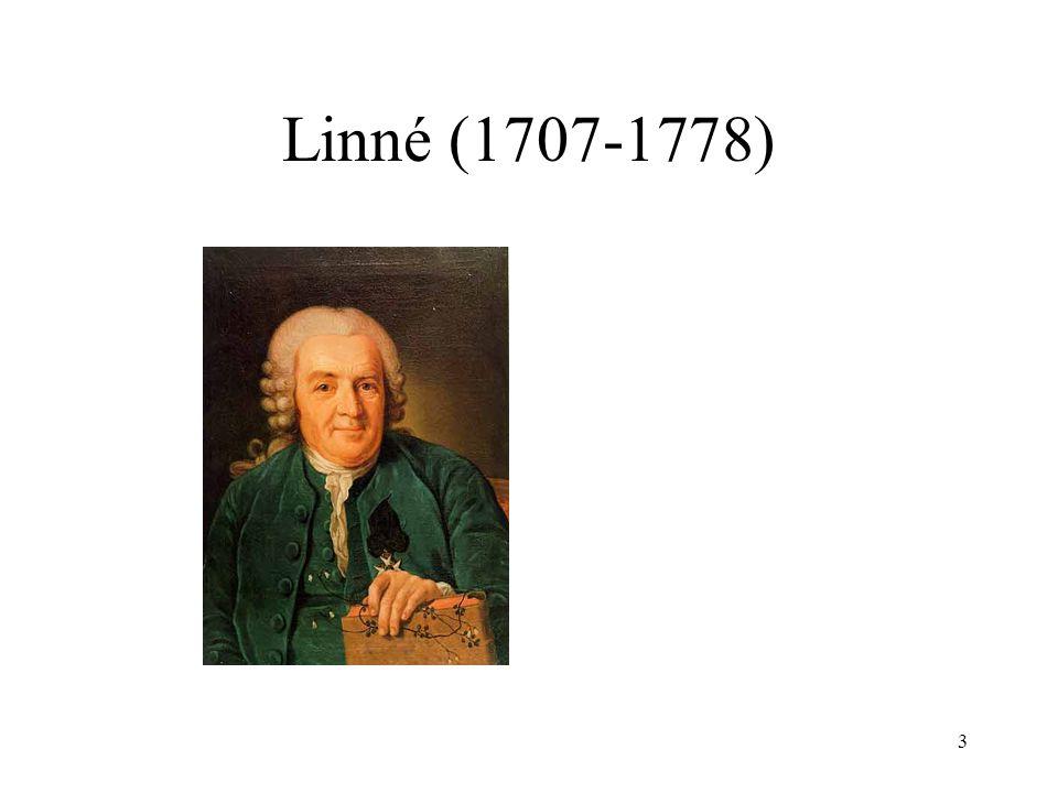 3 Linné (1707-1778)