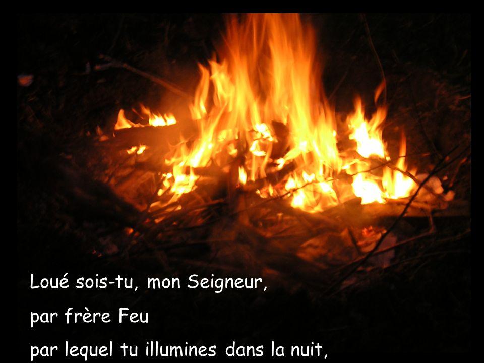 Loué sois-tu, mon Seigneur, par frère Feu par lequel tu illumines dans la nuit,