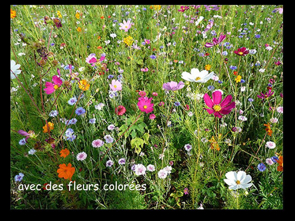 avec des fleurs colorées