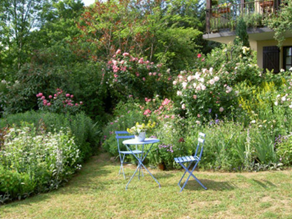 JUIN Les fleurs envahissent les champs et les jardins, les égayant de leurs vives couleurs