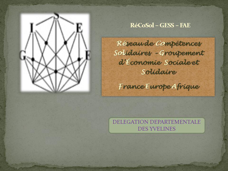 Réseau de Compétences Solidaires – Groupement dÉconomie Sociale et Solidaire France Europe Afrique Réseau de Compétences Solidaires – Groupement dÉcon