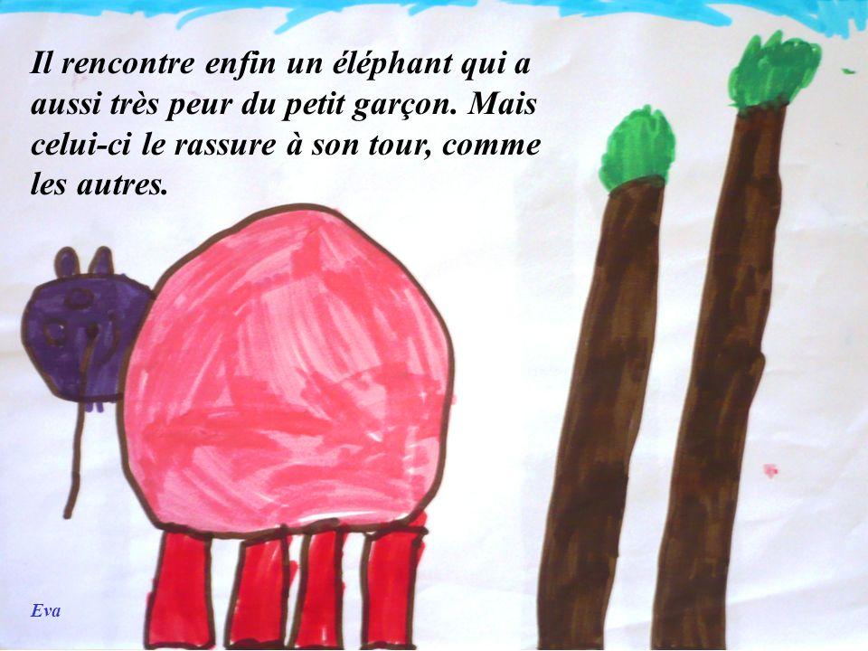 Eva Il rencontre enfin un éléphant qui a aussi très peur du petit garçon. Mais celui-ci le rassure à son tour, comme les autres.