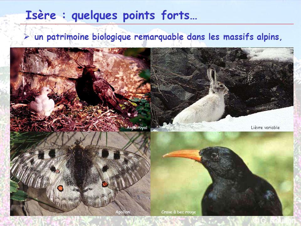 11 Isère : quelques points forts… un patrimoine biologique remarquable dans les massifs alpins, Haut Trièves et ObiouOisans Plateau dEmparisChaîne de