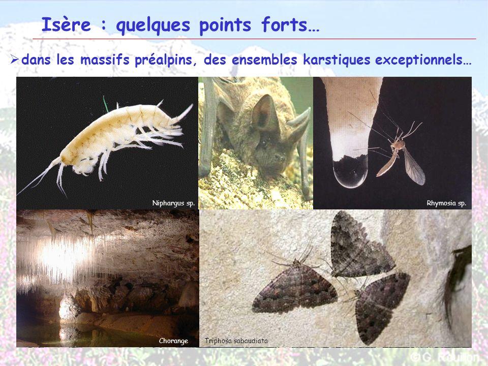 12 Isère : quelques points forts… dans les massifs préalpins, des ensembles karstiques exceptionnels… Rebord oriental du Vercors Hauts plateaux du Ver