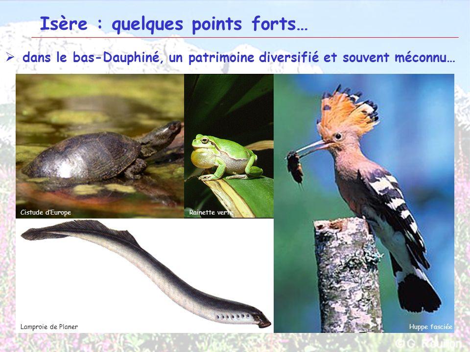 13 Isère : quelques points forts… dans le bas-Dauphiné, un patrimoine diversifié et souvent méconnu… Isle CrémieuBourbre Bas-DauphinéPlateau de Larina