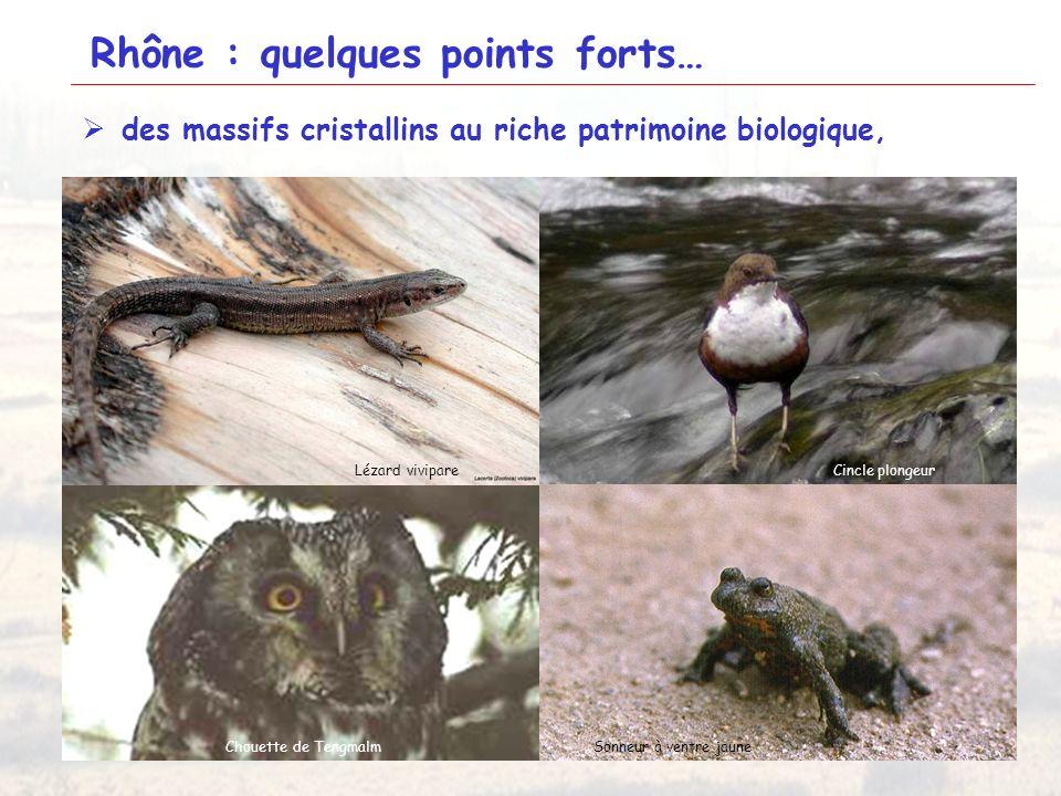 17 Rhône : quelques points forts… des massifs cristallins au riche patrimoine biologique, Monts du LyonnaisMassif du Saint Rigaud Coteaux de Condrieu