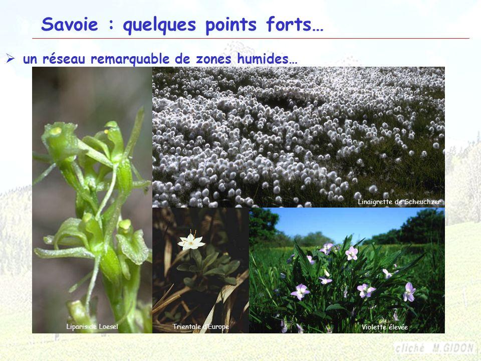 22 Savoie : quelques points forts… un réseau remarquable de zones humides… Les SaisiesVanoise Lac du BourgetVanoise Cistude dEuropeCrossope aquatique