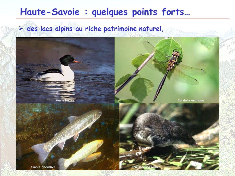 24 Haute-Savoie : quelques points forts… des lacs alpins au riche patrimoine naturel, Lac Léman Lac dAnnecyLac de Tavaneuse Tapis de characées Littore