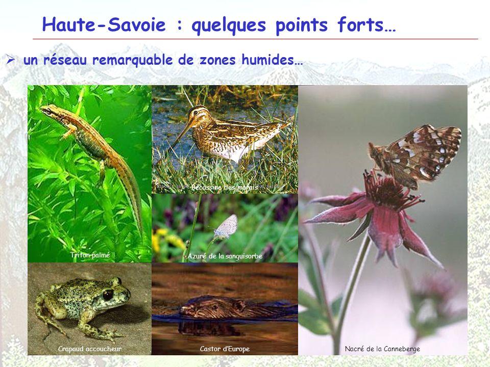 25 Haute-Savoie : quelques points forts… un réseau remarquable de zones humides… Lac blancLacs Jovet Cours de lArveCarlaveyron Liparis de Loesel Œille