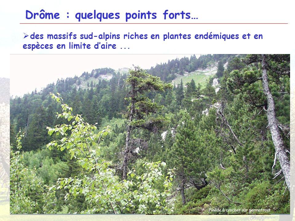 9 Glandasse Ancolie de Bertoloni Panicaud blanche-épine Pivoine officinaleAndrosace de Chaix Chamois Gélinotte des bois Tétras lyre Vautour fauve Pros